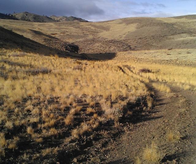 Fall colors west of Hunter Creek