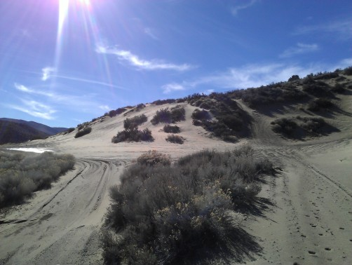 Dunes off Ophir Rd, above Washoe Valley