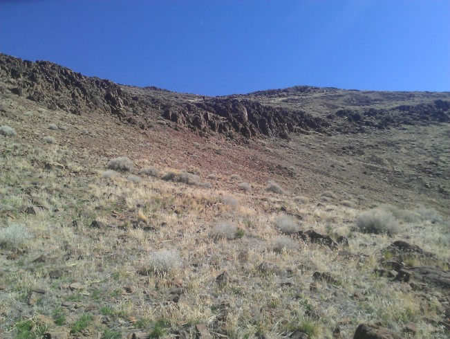 Exploring a steep canyon in the Pah Rahs