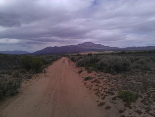 Dixie Lane, heading to State Line Peak