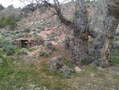 Odd structure along Dry Valley Creek