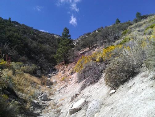 White granite canyons