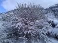 Winter is coming! Tahoe Pyramid Bikeway
