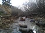 Vernal creeks pop up on familiar rides