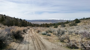 Looking back to Bedell Flats