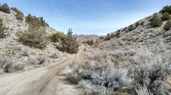 Final climb to Willow Springs