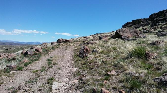 Chunky road between wildernesses