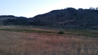 Our meadow for the night