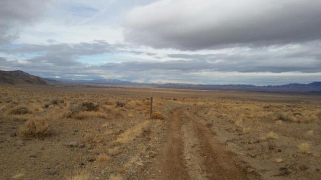 Range land, Pine Grove Flats