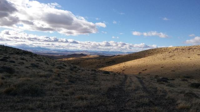 Exit, Dead Camel Mtns