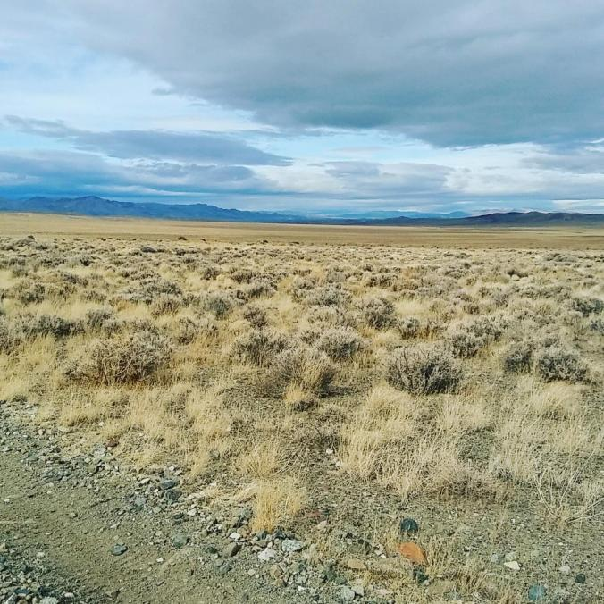 Rancher's heaven