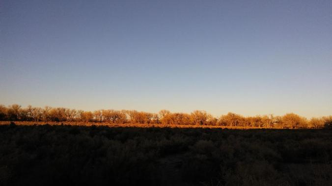 Sunset on Carson River