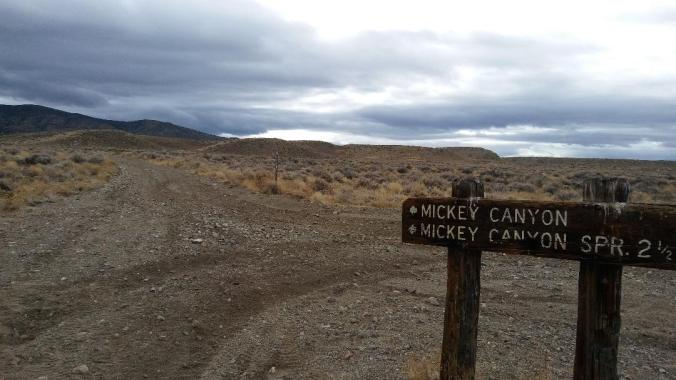 Mickey Canyon, Pine Grove Hills