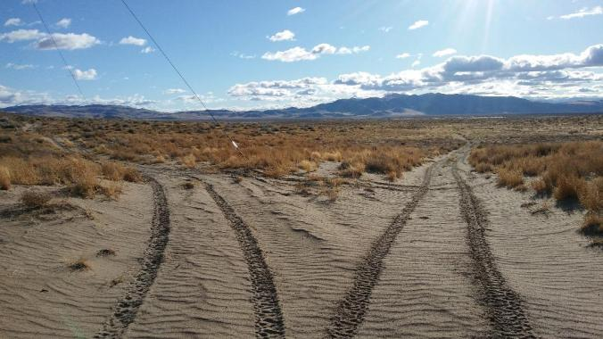 Sandy choices, Lahontan Reservoir