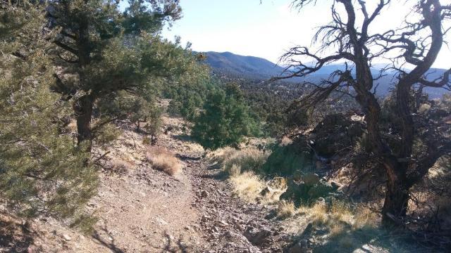 Rugged climb from Sand Cyn to Scott's Cyn
