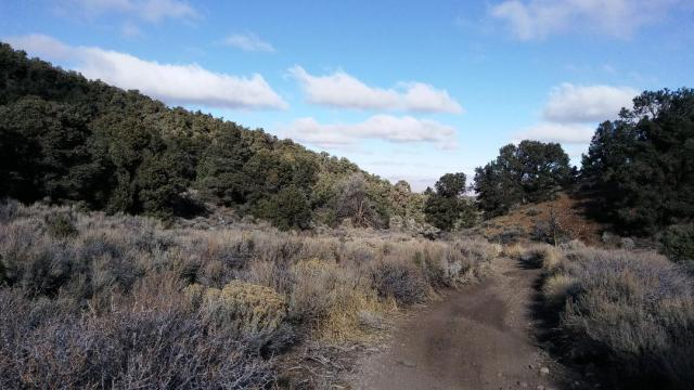 Near Lobdell Summit, Pine Grove Hills